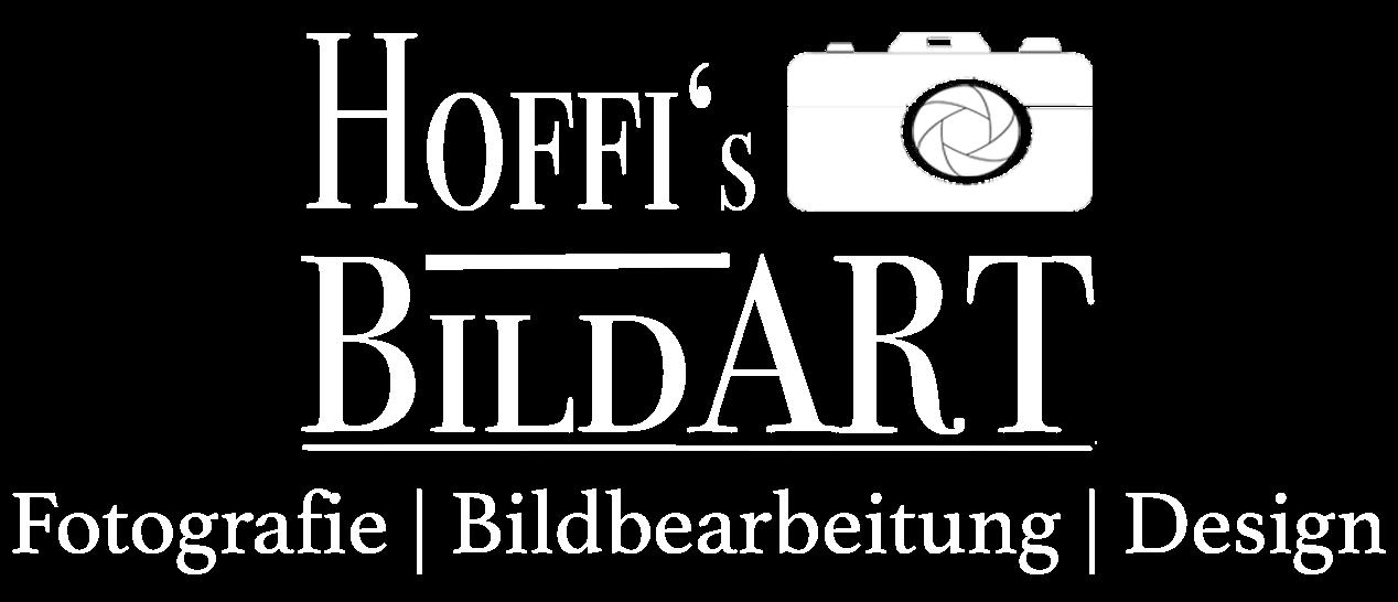 BildART_LOGO_01.2017 Headline