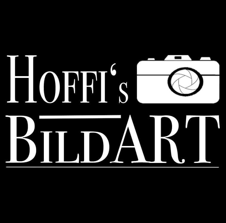 BildART_LOGO_01.2017